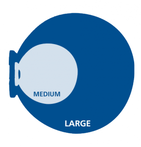 Werbebande Easydisc Flex Vergleich
