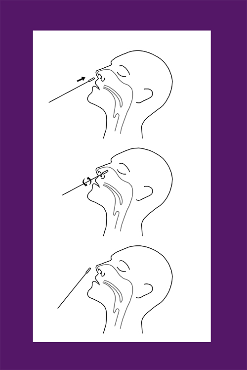 Auszug aus der EASY CHECK COVID-19 Antigen Nasaltest Gebrauchsanweisung